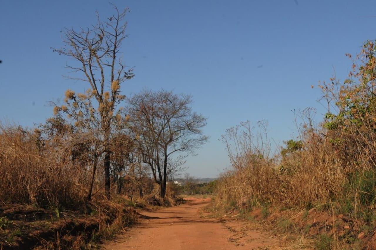 Nova licitação para obras no Parque Ecológico Burle Marx