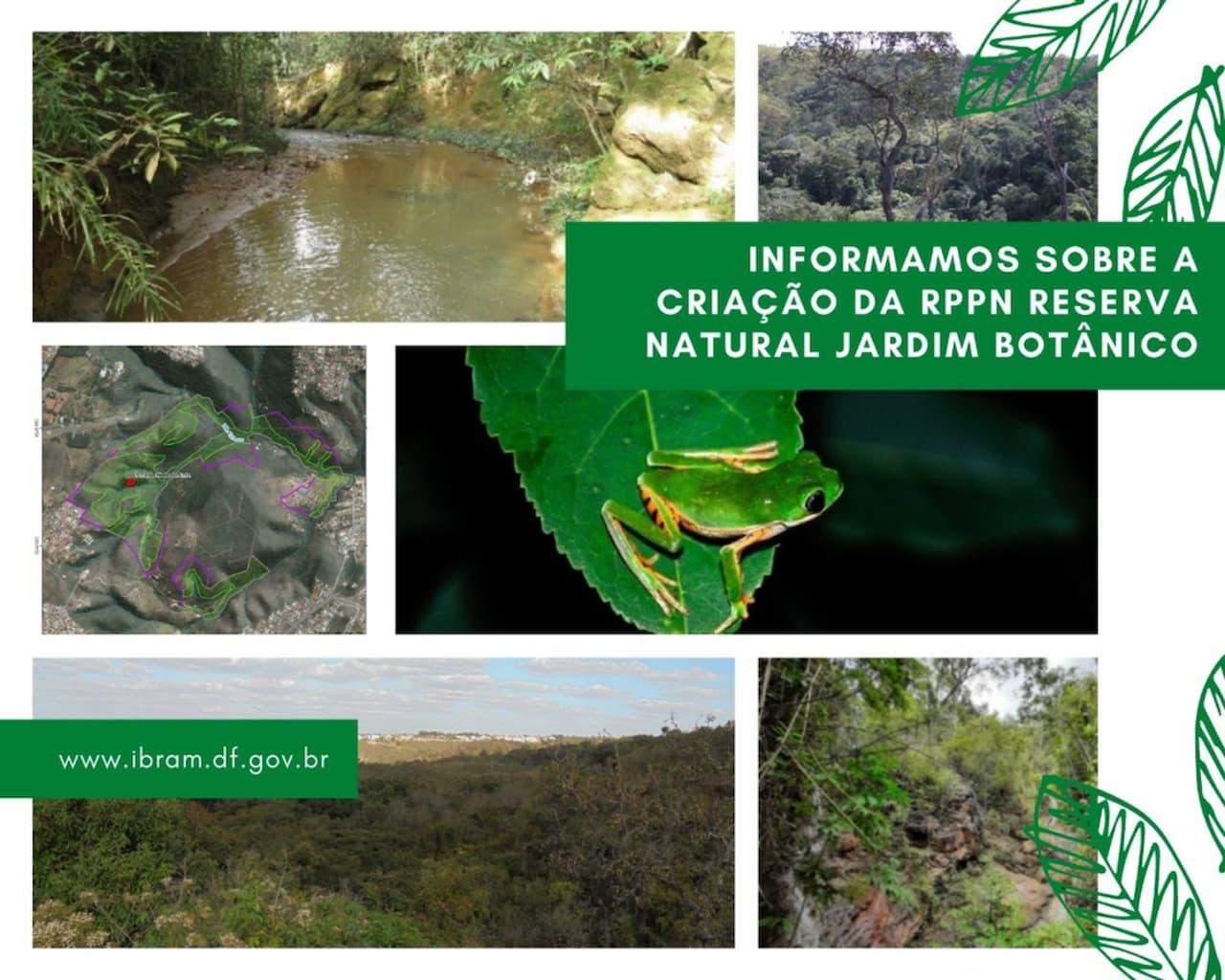 Vamos conhecer a Reserva Natural Jardim Botânico?