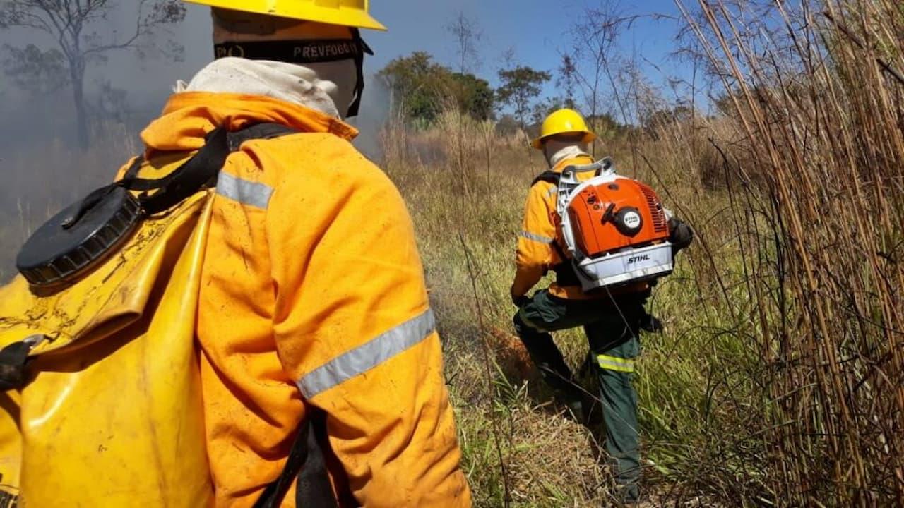 Brasília Ambiental vai contratar brigadistas florestais
