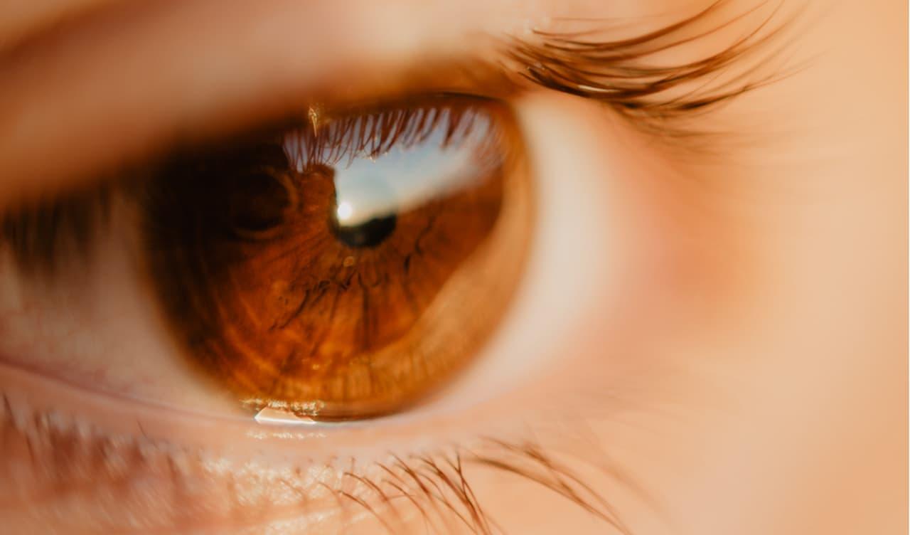 Dia da Saúde Ocular: 50% milhões de brasileiros sofrem com algum distúrbio da visão_