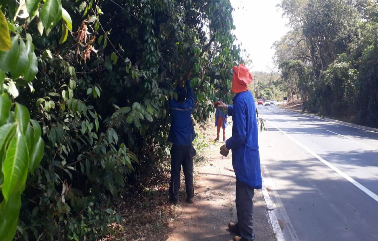 manutenção-frequentes-calçadas (1)