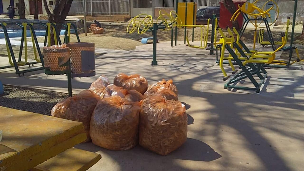 16.09-lixo-em-São-Sebatião-foto-GDF-presente (1)