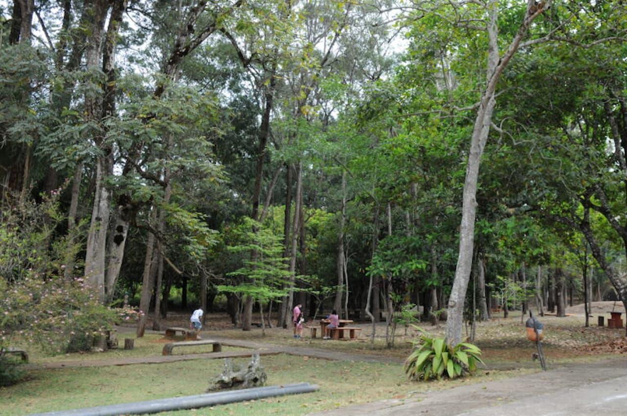 Parque Saburo Onoyma reabre, com medidas de segurança