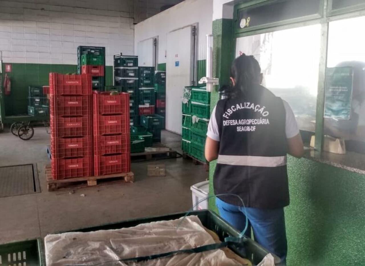 Ação educativa envolve distribuidores de frutas na Ceasa
