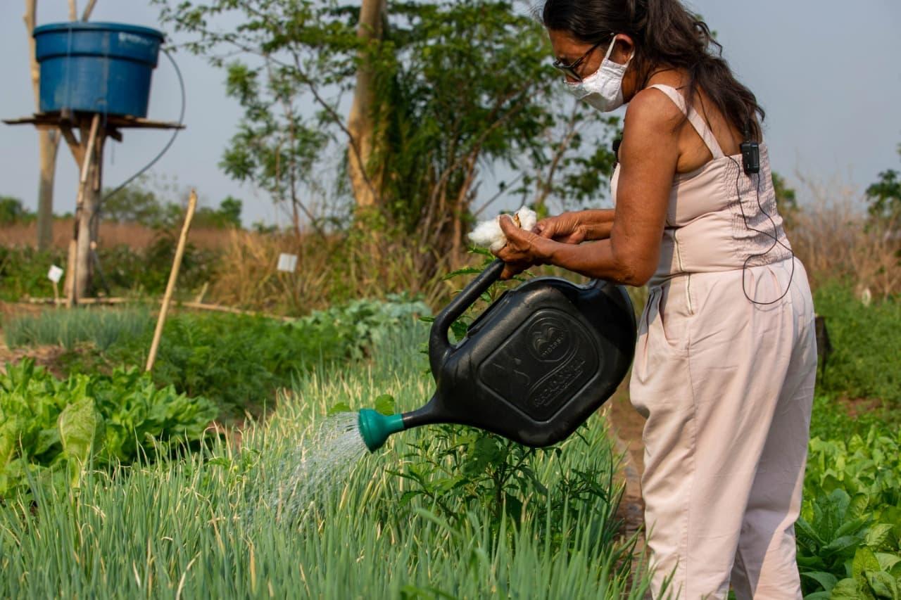 agroecologia-foto-divulgação